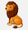 cute lion sitting cartoon isolated on white backgr vector image vector image