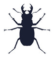 detailed silhouette deer beetle vector image