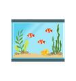 icon of rectangular glass aquarium with orange vector image