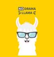 llama alpaca animal face wearing sun glasses no vector image