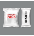Realistic Pack Templates vector image