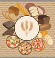 set of wheat cartoon food bread rye bread vector image