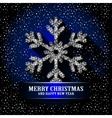 Shining Snowflake on the blue background vector image vector image