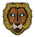 Tiger head zentangle vector image vector image
