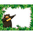 bear in nature frame vector image vector image