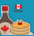 canada country american vector image