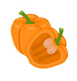colorful whole and half orange bell peppe vector image vector image