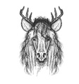 Psychedelic hand-drawn sketch of Horse face with vector image vector image