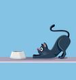 cat eating cartoon vector image vector image