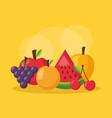 healthy food fresh vector image vector image