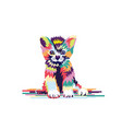 modern colorful cute cat vector image