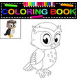 owl coloring book vector image