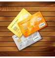 Set of detailed glossy credit cards vector image vector image