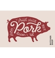 Trendy with red pig silhouette and vector image