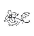 vintage floral border baroque decorative ornament vector image