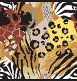 abstract seamless pattern with animal skin vector image vector image