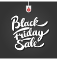 Black friday brush lettering on background with vector image vector image