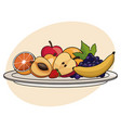 fruit plate food healthy image vector image