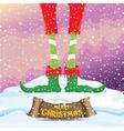merry christmas card with cartoon elfs vector image