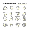 Set modern thin line web icons on medicine human vector image