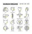 set modern thin line web icons on medicine human vector image