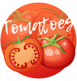 whole and half tomato vegetable cartoon vector image vector image