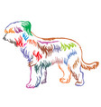 colorful decorative standing portrait of briard vector image vector image
