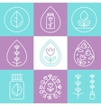 Essential Oils Outline Icons or Logos vector image