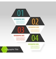 Hexagon modern infographics options banner vector image vector image