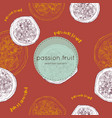 passion fruit hand draw seamless vector image vector image