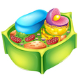 Plant cell vector image vector image