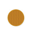 top view isolated circle rattan tray vector image vector image