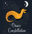 the constellation draco star in the night sky vector image