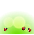 Green background with ladybirds vector image