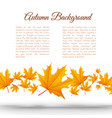 abstract light autumn floral template vector image