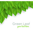 background with green leaves realistic vector image