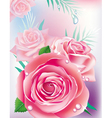 card with pink roses vector image