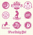 Set Retro Its A Girl Labels and Icons vector image