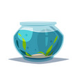 aquarium with clear water vector image vector image