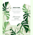 botanical vertical banners with tropical monstera vector image vector image