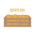 box with potatogrocery basket with product vector image vector image