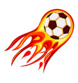 colorful cartoon soccer fast ball flame vector image vector image