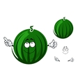 Cute cartoon striped green watermelon character vector image vector image
