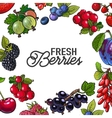 Frame of garden berries with round place for text vector image vector image