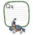 Little quail for ABC Alphabet Q vector image
