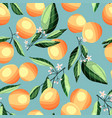 peaches and apricots on tree branches seamless vector image