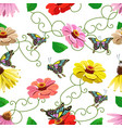seamless pattern of flowers and butterflies vector image