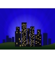 Of Night Cityscape vector image