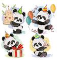 happy birthday set with baby panda bears vector image