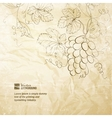 Brown wrinkled paper with grapes vector image vector image